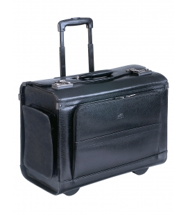 Wheeled Catalog Case